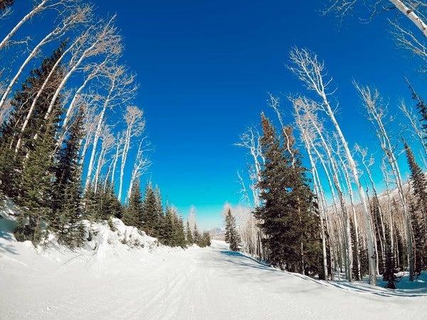 varicoză și ski